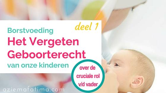 Borstvoeding: Het Vergeten Geboorterecht van onze Kinderen – deel 1