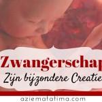 Zwangerschap: Zijn bijzondere Creatie