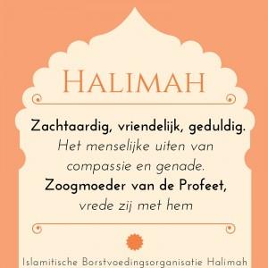 Zachtmoedigheid, geduld, mildheid.Het menselijke uiten van genade, gunst & gratie. (7)