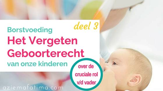 Borstvoeding: Het Vergeten Geboorterecht van onze kinderen – deel 3